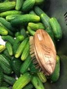 Essiggurken-Gewürzgurken-Einlegen