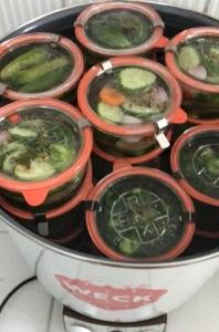 Essiggurken-Gewürzgurken-Einkochen